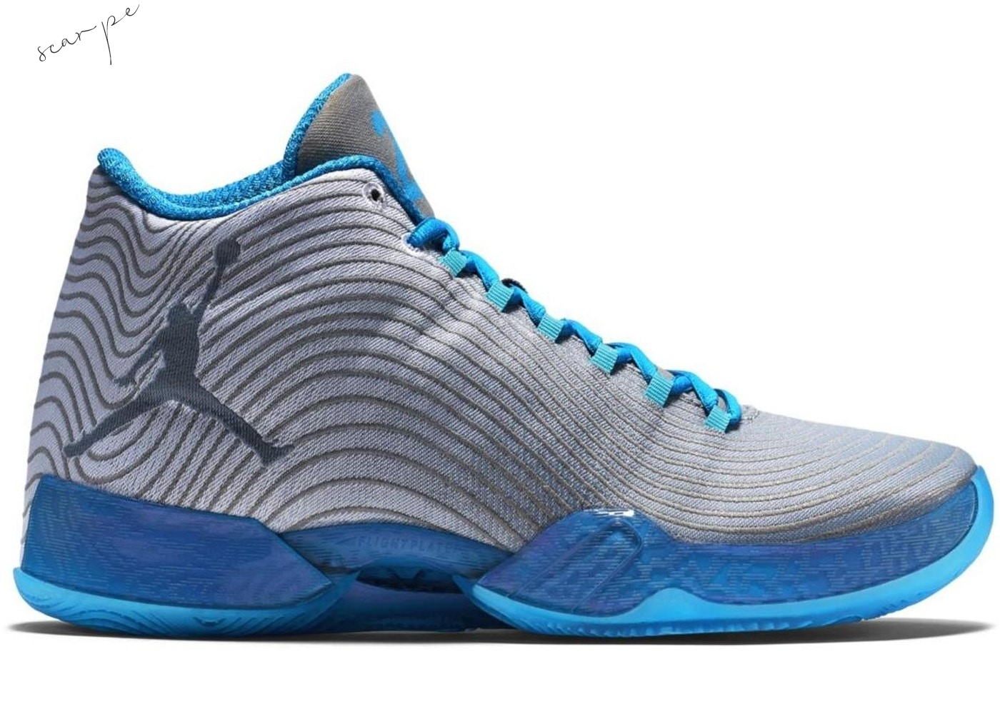 "Vendite Air Jordan 29 ""Playoff Pack Home"" Gris Blu (749143-104) Scarpe Online"